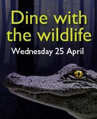 Dine with the Wildlife